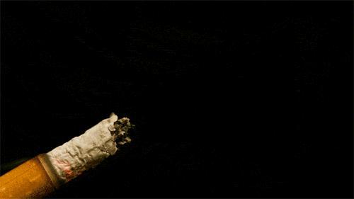 为什么说,抽15根烟就会【改变基因】?有 - 第1张    网络大咖