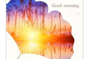 周六早安日签190223:今天多努力的每一秒,都是明天成功时的微笑