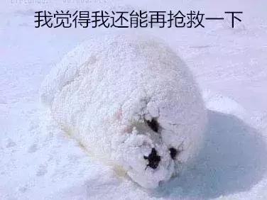 燕赵都市报 融合