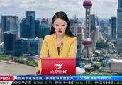 黄宏飞:震荡反弹格局有望延续,短期不必太过悲观