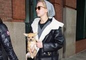 今年流行的羊羔毛外套,胖mm这么穿才不是虎背熊腰