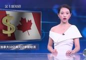 10亿美元订单被紧急取消?加拿大终于自食恶果!
