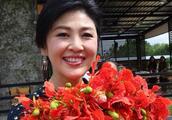 喜爱鲜花的泰国前总理英拉:云想衣裳花想容,芙蓉不及美人妆
