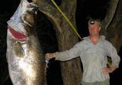 世界最严重十大外来物种入侵,亚洲鲤鱼未上榜!
