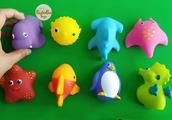 学习海洋动物的名字玩具小鲨鱼为孩子们唱的歌