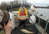 听说国外水库鲤鱼泛滥事实真的如此吗,看看老外钓的有多大!