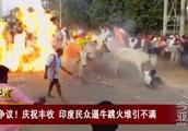 争议!庆祝丰收 印度民众逼牛跳火堆引不满