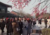 西安年最中国 大雁塔景区张灯结彩 只为春节迎?#24433;?#26041;来客