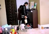 小狗miumiu坐门口等咘咘回家,网友:这狗太有灵性了!好想养一只