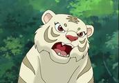 小虎还乡大结局,小虎回归自然成为森林之王,片尾有些感伤了!