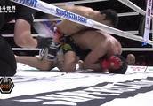 散打小将被抱住狂摔惨遭KO,重拳打不停裁判果断终止比赛