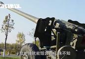 仿造100门中国火炮,40门炸膛90名炮兵遭殃,中国专家很无奈