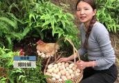 21岁姑娘归隐山村,包百亩山头养鸡带领村民致富,年入百万
