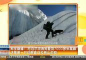 尼泊尔流浪狗登顶7000多米高峰,这是第一只征服喜马拉雅山的狗