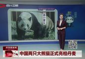 中国两只大熊猫正式亮相丹麦!女王出席并为熊猫馆剪彩