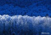 用心理学解释为什么看见蓝色冷,黄色暖