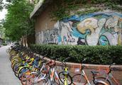 共享单车:不是公益项目