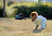 可以家养的猴子大概多少钱一只 还有猴子的寿命有多长