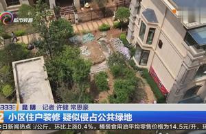 小区住户装修,竟然私自将小区绿化带改造成了私家花园