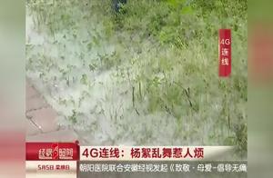 记者上街头探访杨絮疯飞景象,这个春天有点难熬,环境何时可恢复