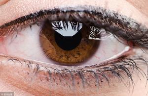 网传动画视频能缓解眼疲劳 医生:长时间盯着会加重
