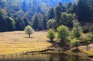 这座云南人的天池,每年50万人前来打卡,水清到晃眼!