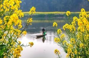 写农家生活古诗词 有什么关于农家生活的古诗词