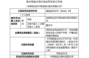 安徽定远农商行被罚20万:贷款资金用途监控不力