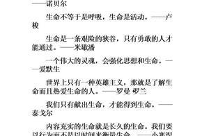 优美散文语录语录bet36亚洲官网_bet36在线注册_bet36投注 语句优美的作文