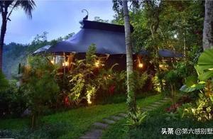 巴厘岛考察日记(二):打卡乌布小镇,野奢帐篷里来场丛林探险!