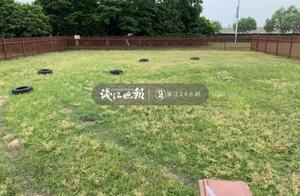 杭州试行推出公共遛犬区,你有什么意见建议,留言告诉我们