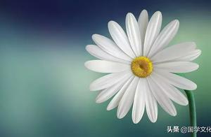 《道德经》中的7大人生哲理,不读《道德经》,不懂人生真谛