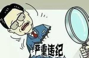 宿迁市原安全生产监督管理局副调研员卞兆猛严重违纪违法