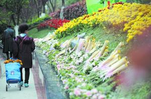 成都:鲜花寄哀思 越来越多市民接受绿色殡葬