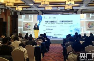 """""""电影和版权:机遇与挑战并存""""论坛在京举办 呼吁全球共同打击电影盗版侵权"""