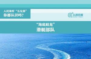 中国海军五大兵种包括哪些?主要做什么资料图片