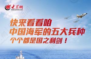 中国海军五大兵种,个个都是国之利剑