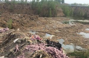 山东青州一40亩坑被倒垃圾 水体发黑 环保局:已取样