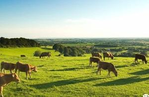 伦敦要在Croydon建立第三个自然保护区!这里的房价未来要涨?
