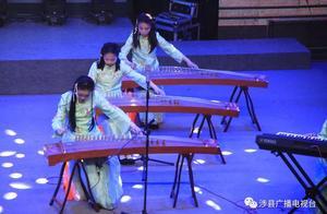 涉县第三十届中小学校园文化艺术节器乐专场精彩瞬间