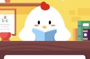 小鸡和陌生人在线聊天时 可给对方支付宝付款码截屏吗