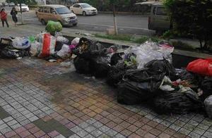 【问政四川】成都龙潭寺隆兴嘉苑路边长期堆放垃圾,臭气冲天!物业回应