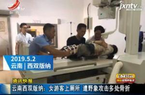 云南西双版纳:女游客上厕所 遭野象攻击多处骨折