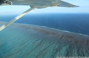 澳大利亚凯恩斯:空中看大堡礁是一种震撼(图)