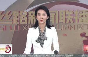 中国古代规模最大帝王陵园 揭秘修复秦始皇陵出土的彩绘青铜水禽