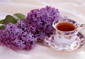 薰衣草可以泡茶喝吗 熏衣茶泡茶喝有什么功效