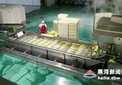 云南冷凍食品的進貨途徑