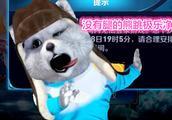 王者荣耀浣熊君:极乐净土没腿残疾动物公浣熊直播版?笑的肚子疼!