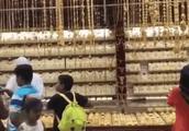 去迪拜旅游!游客:黄金比大白菜还便宜!
