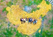 有创意!大学生用两麻袋银杏叶拼出中国地图 获众多网友点赞